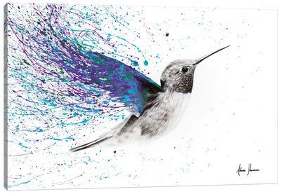 Hummingbird Garden Canvas Art Print