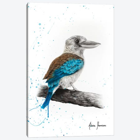 One Clever Kookaburra 3-Piece Canvas #VIN436} by Ashvin Harrison Canvas Print