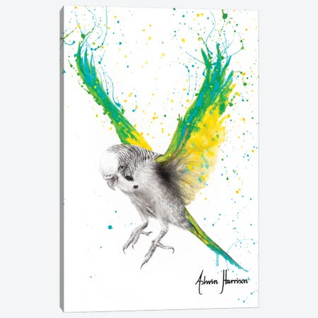 The Bold Budgie Canvas Print #VIN442} by Ashvin Harrison Art Print