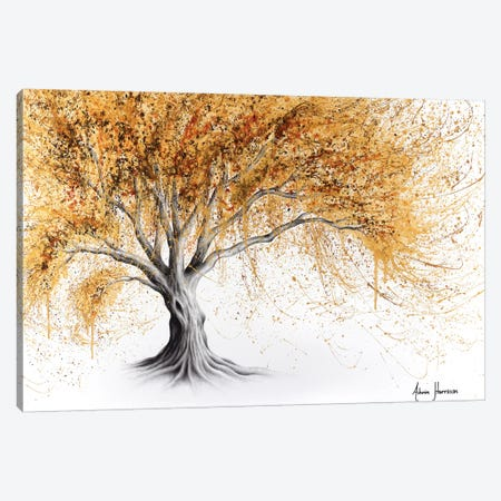 Golden Glow Tree Canvas Print #VIN443} by Ashvin Harrison Art Print