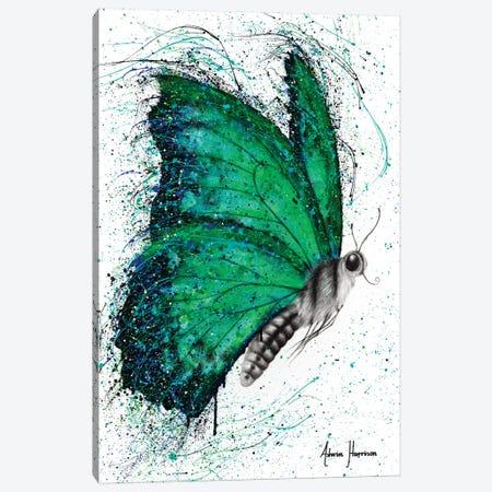 Emerald City Butterfly Canvas Print #VIN447} by Ashvin Harrison Canvas Art