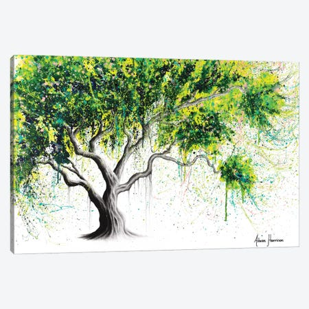 Funky Fig Tree 3-Piece Canvas #VIN452} by Ashvin Harrison Canvas Artwork
