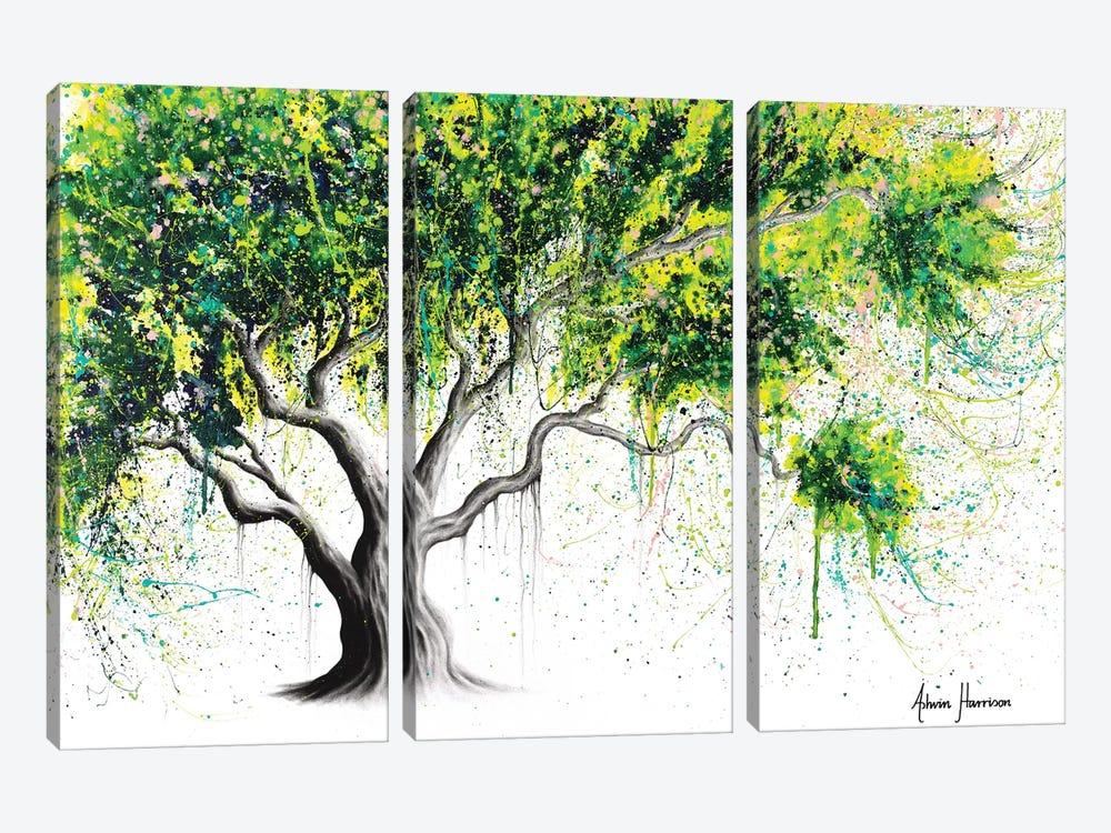 Funky Fig Tree by Ashvin Harrison 3-piece Canvas Artwork