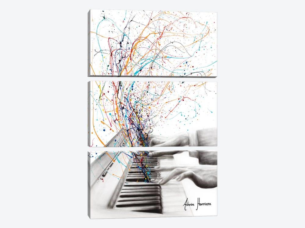 The Keyboard Solo by Ashvin Harrison 3-piece Canvas Art Print