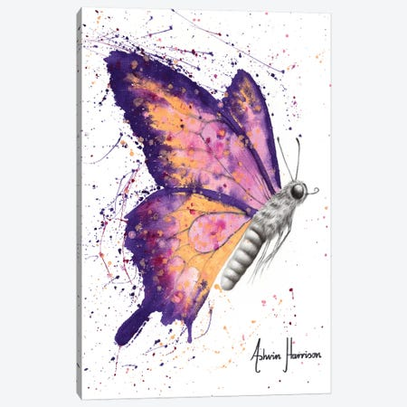 Venus Sunset Butterfly Canvas Print #VIN467} by Ashvin Harrison Canvas Art