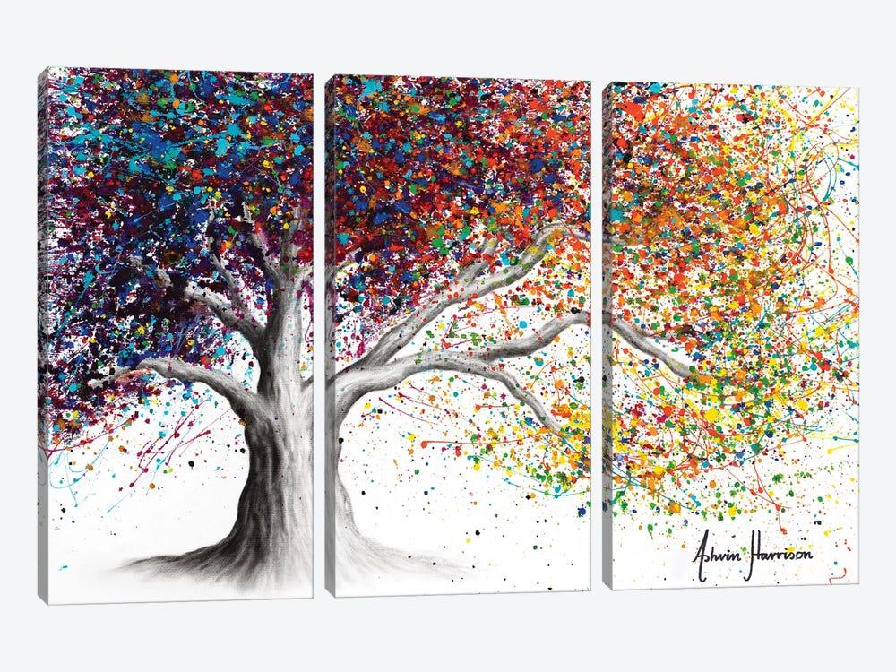 The Colour Of Dreams by Ashvin Harrison 3-piece Canvas Print