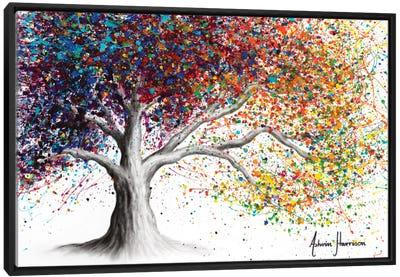 The Colour Of Dreams Canvas Art Print