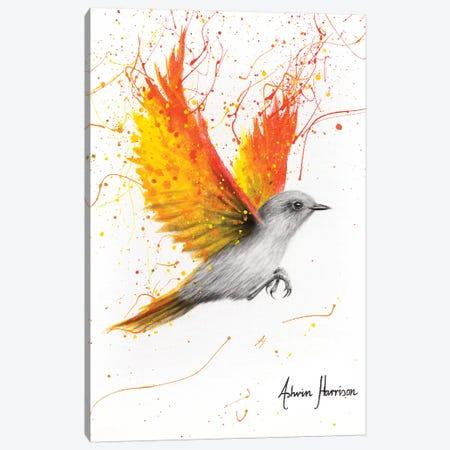 Citrus Star Bird Canvas Print #VIN474} by Ashvin Harrison Canvas Print