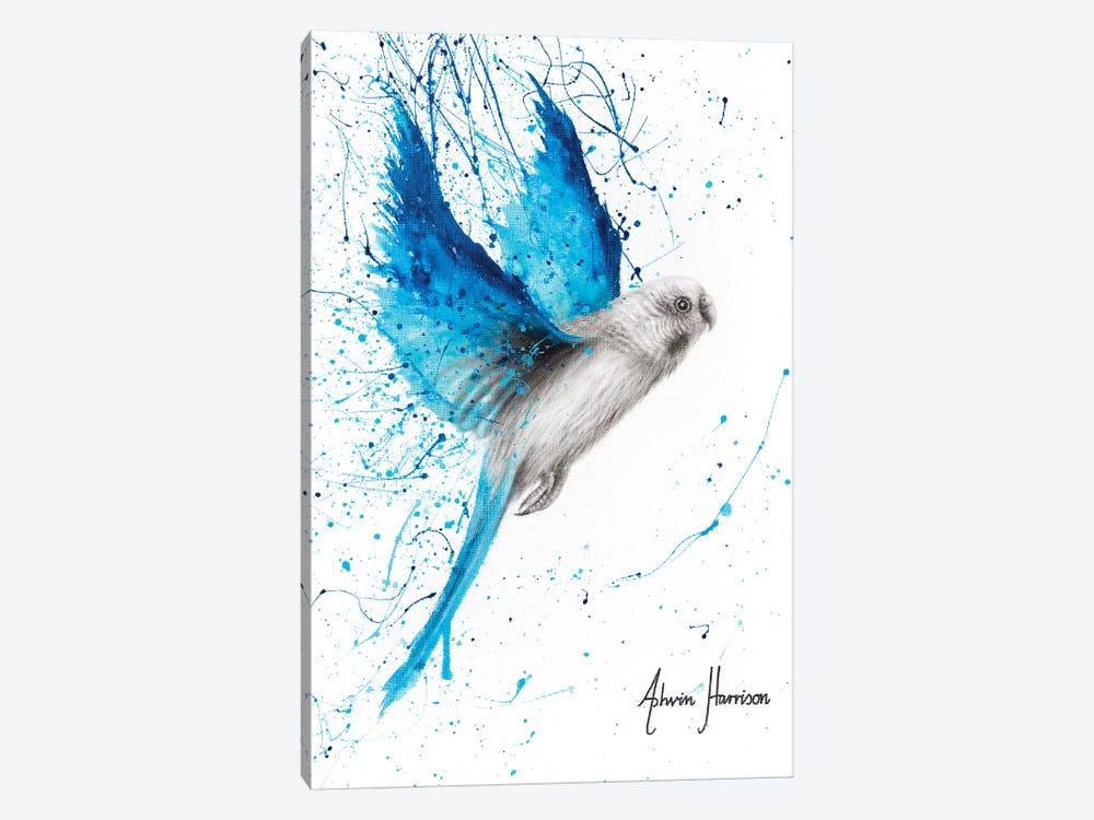 Blue Lake Budgie by Ashvin Harrison 1-piece Canvas Art