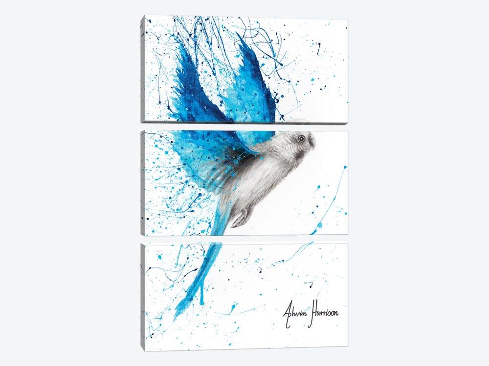 Blue Lake Budgie by Ashvin Harrison 3-piece Canvas Wall Art