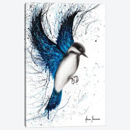Humble Freedom Bird Canvas Print #VIN484} by Ashvin Harrison Canvas Wall Art