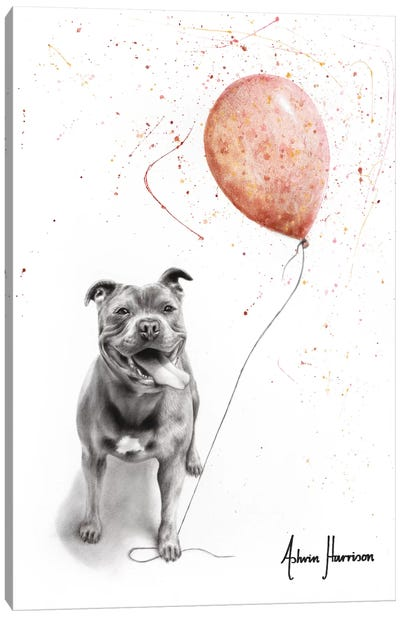 Molly And Her Balloons Canvas Art Print