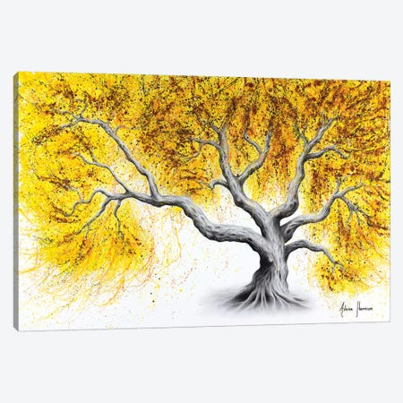 Sunshine Tree Canvas Print #VIN488} by Ashvin Harrison Art Print