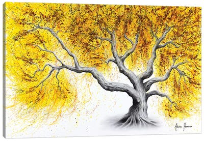 Sunshine Tree Canvas Art Print