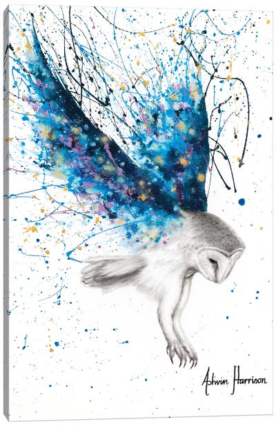 The Spirit Owl Canvas Art Print