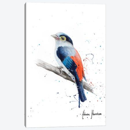 Bird Of Patience Canvas Print #VIN495} by Ashvin Harrison Art Print
