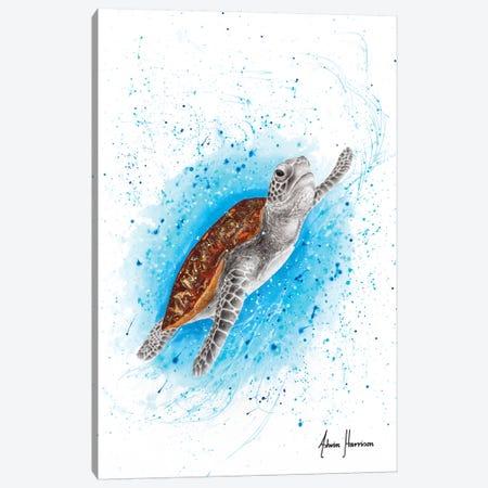 Happy Sea Turtle Canvas Print #VIN505} by Ashvin Harrison Canvas Art Print