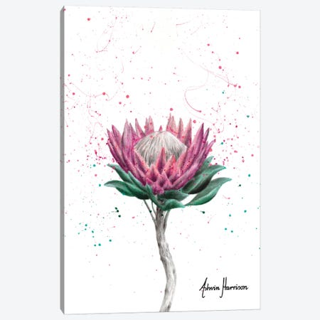 Sugarbush Flower Canvas Print #VIN508} by Ashvin Harrison Canvas Artwork
