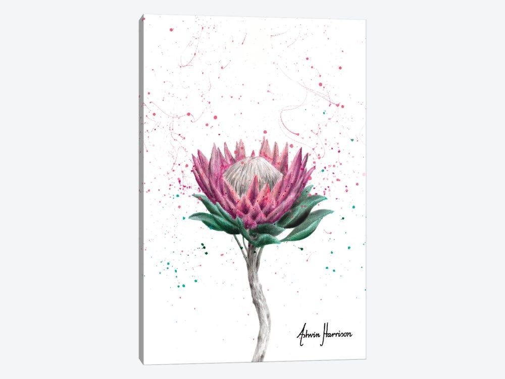 Sugarbush Flower by Ashvin Harrison 1-piece Canvas Wall Art