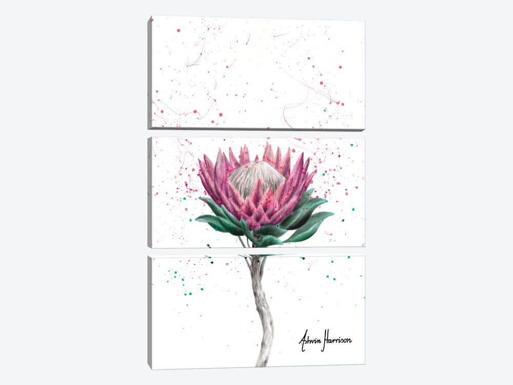 Sugarbush Flower by Ashvin Harrison 3-piece Canvas Wall Art