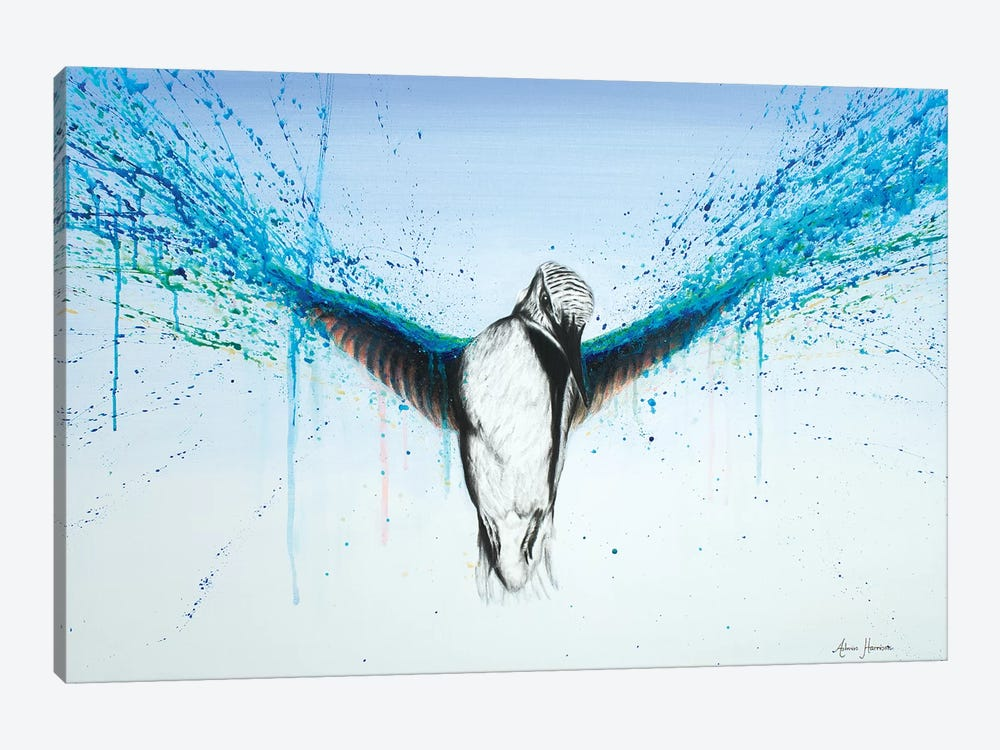 Kingfisher Rise by Ashvin Harrison 1-piece Canvas Print
