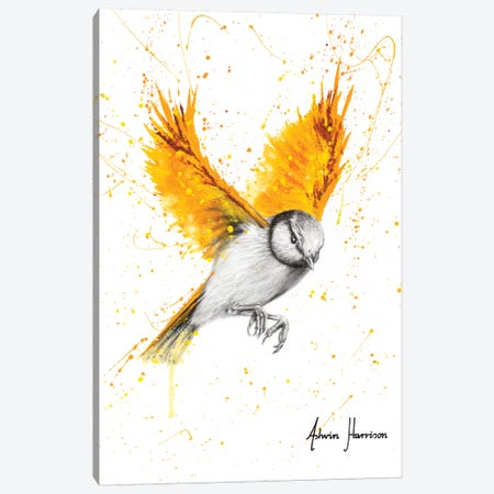 Tiger Wings Bird 3-Piece Canvas #VIN524} by Ashvin Harrison Canvas Art Print