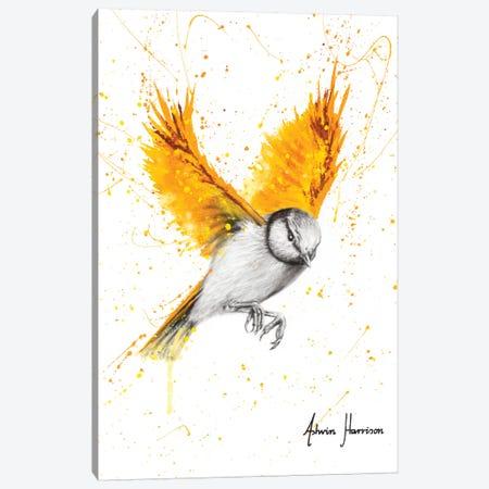 Tiger Wings Bird Canvas Print #VIN524} by Ashvin Harrison Canvas Art Print