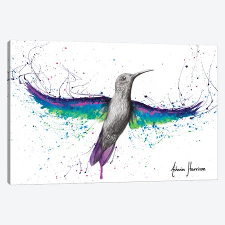 Garden Glow Hummingbird Canvas Print #VIN525} by Ashvin Harrison Canvas Art Print