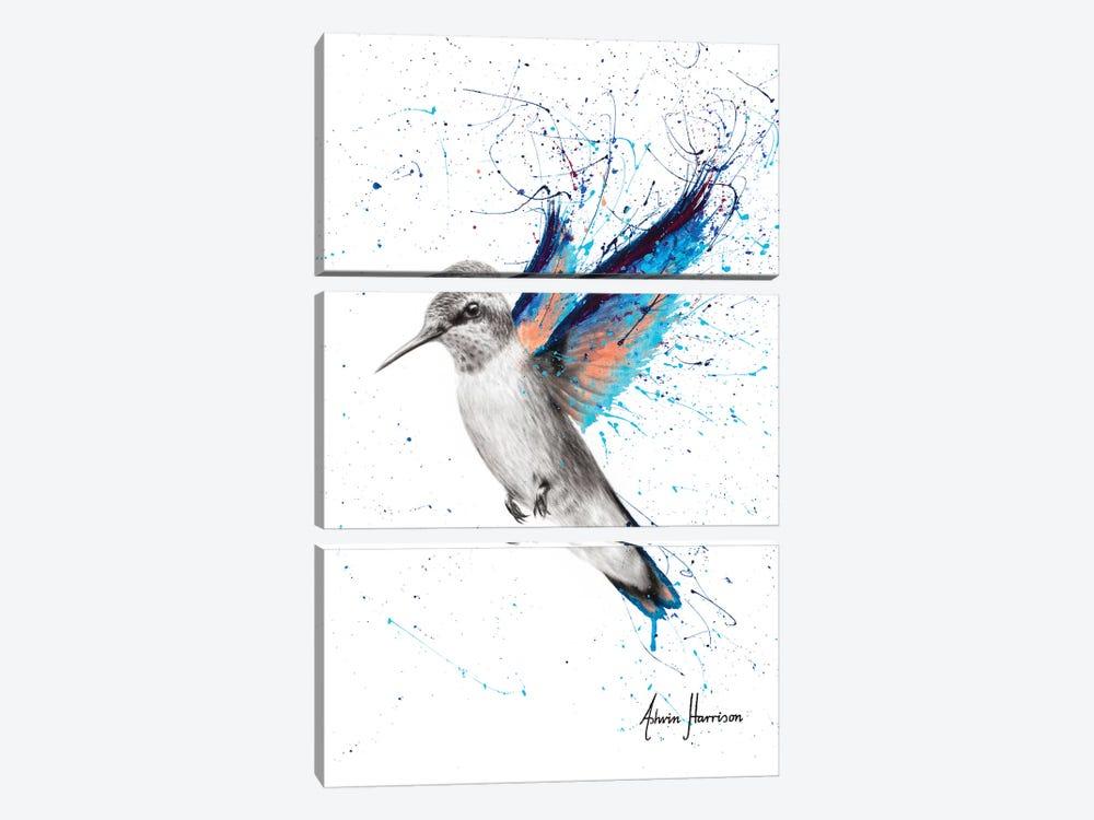 Azul Hummingbird by Ashvin Harrison 3-piece Canvas Art Print