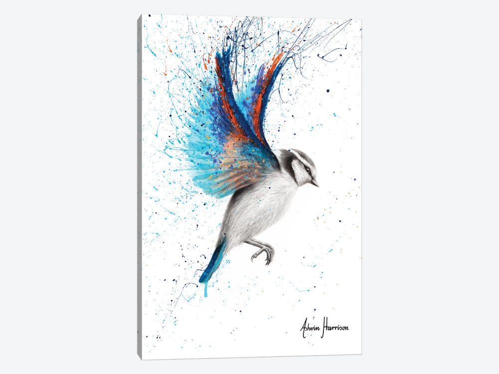 Sunset Feather Finch by Ashvin Harrison 1-piece Canvas Artwork