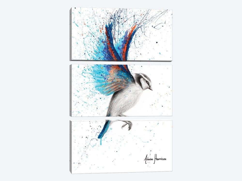 Sunset Feather Finch by Ashvin Harrison 3-piece Canvas Artwork