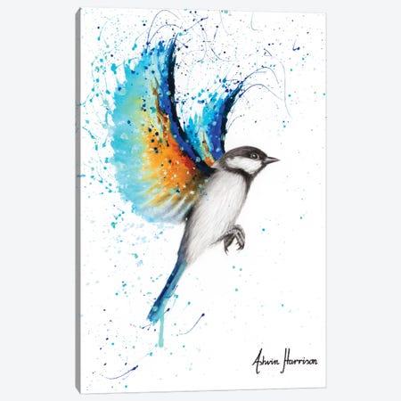 Travelling Blue Bird Canvas Print #VIN547} by Ashvin Harrison Canvas Print