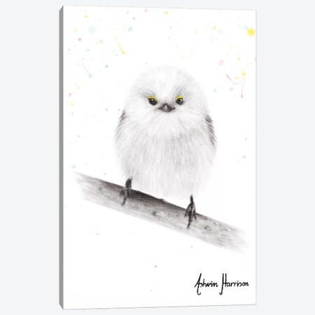 Happy Fluffy 3-Piece Canvas #VIN563} by Ashvin Harrison Canvas Art