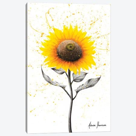 Sunflower Celebration Canvas Print #VIN582} by Ashvin Harrison Canvas Artwork