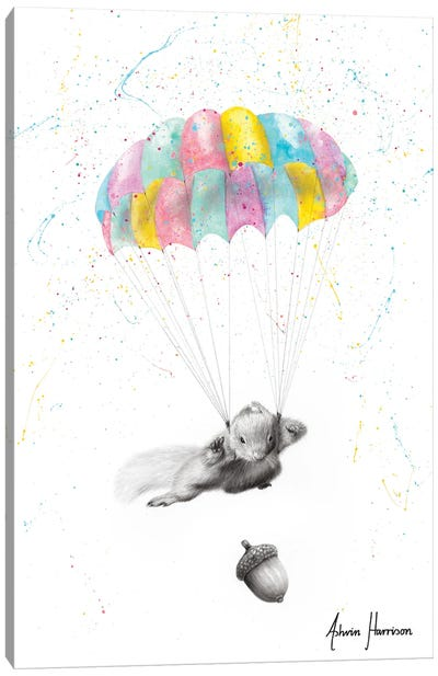 Squirrel Dreams Canvas Art Print