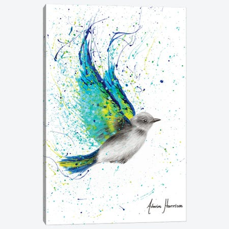 Solo Summer Bird Canvas Print #VIN594} by Ashvin Harrison Canvas Art