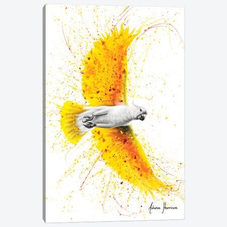 Singing Summer Bird Canvas Print #VIN595} by Ashvin Harrison Canvas Artwork