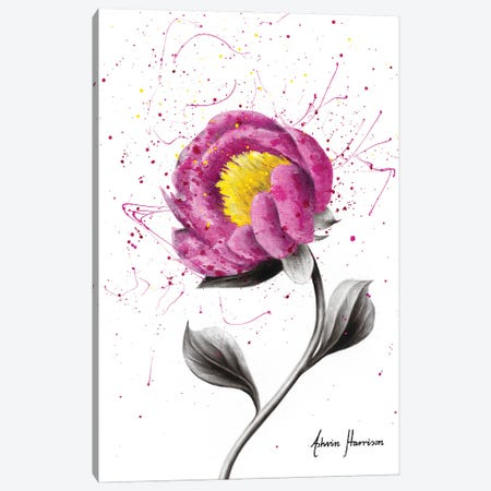Magenta Love Canvas Print #VIN604} by Ashvin Harrison Canvas Art