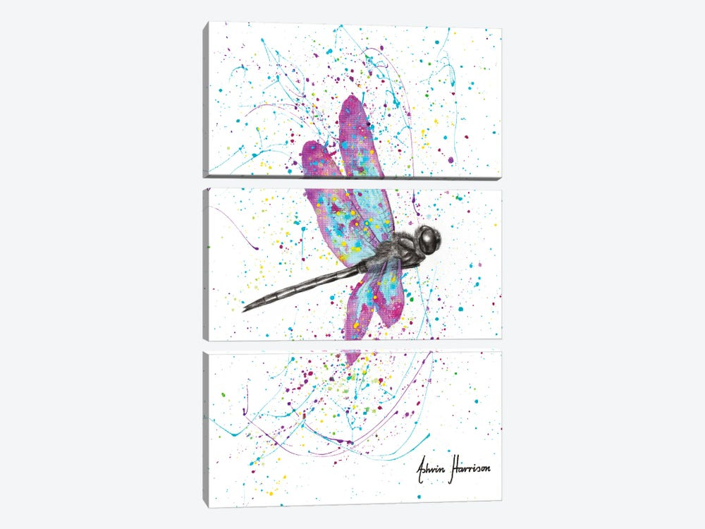 Dancing Dragonfly by Ashvin Harrison 3-piece Art Print