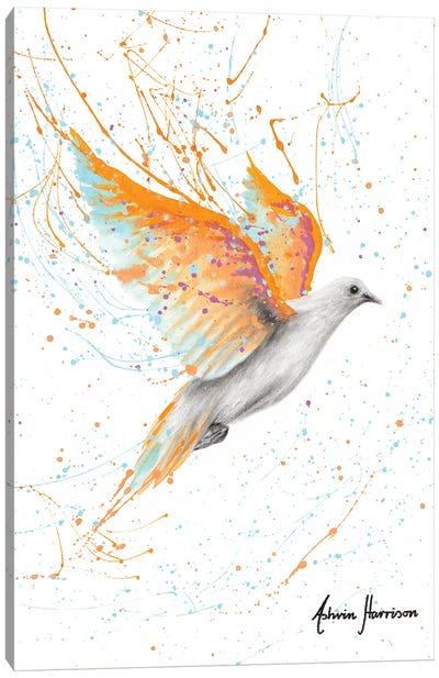 Summer Peace Dove Canvas Art Print