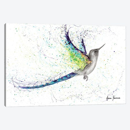 Secret City Hummingbird Canvas Print #VIN608} by Ashvin Harrison Canvas Art Print