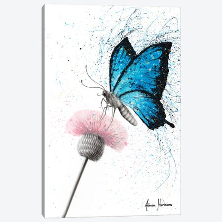 Sugar Butterfly Canvas Print #VIN609} by Ashvin Harrison Art Print