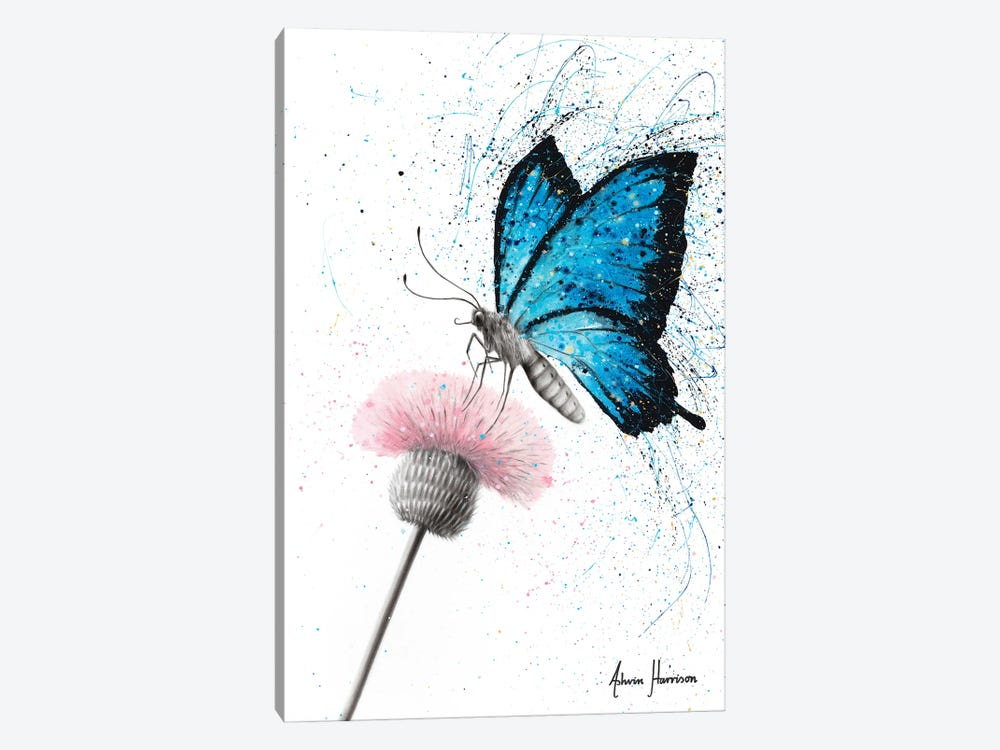 Sugar Butterfly by Ashvin Harrison 1-piece Canvas Print