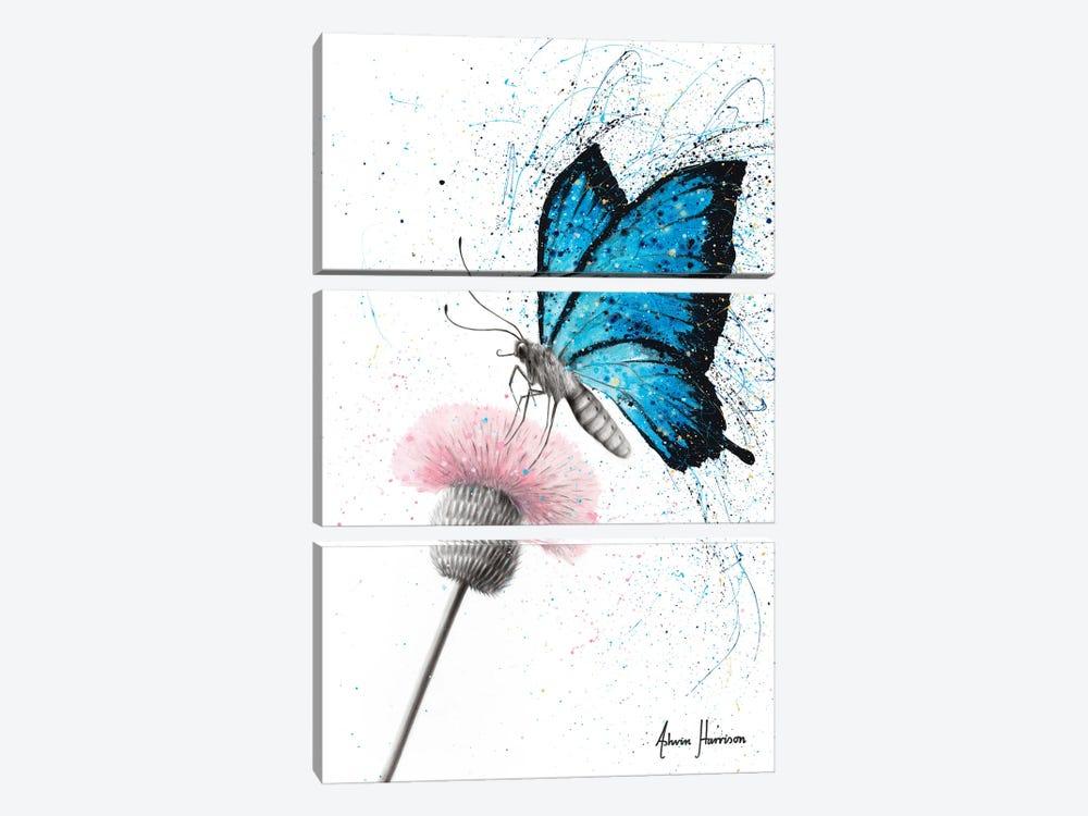 Sugar Butterfly by Ashvin Harrison 3-piece Canvas Art Print