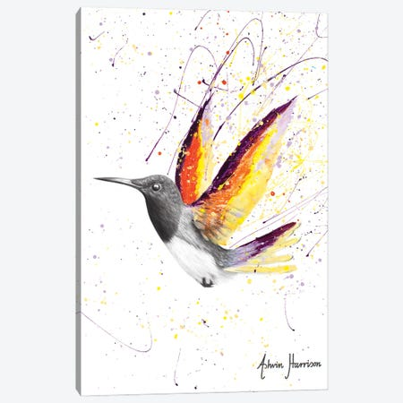 Desert Horizon Bird Canvas Print #VIN630} by Ashvin Harrison Canvas Artwork