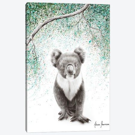Koala Pride Canvas Print #VIN633} by Ashvin Harrison Canvas Wall Art