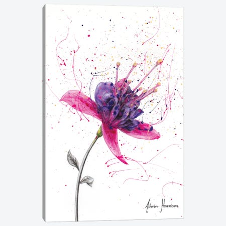 Amethyst Bloom Canvas Print #VIN636} by Ashvin Harrison Canvas Print