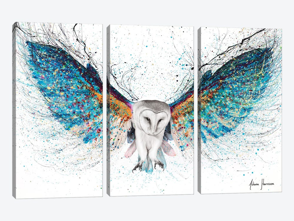 Opulent Night Owl by Ashvin Harrison 3-piece Canvas Artwork