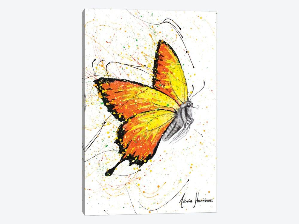 Warm Summer Butterfly by Ashvin Harrison 1-piece Canvas Art Print
