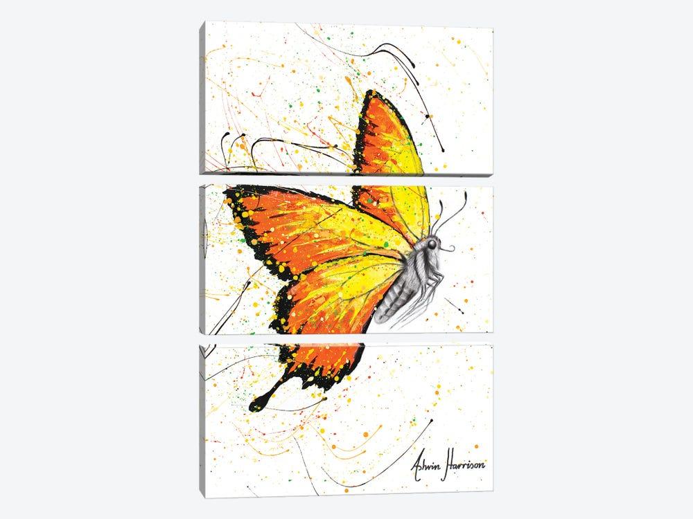 Warm Summer Butterfly by Ashvin Harrison 3-piece Art Print